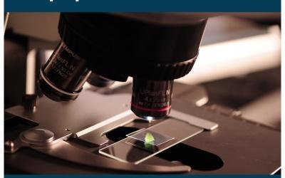 Guide du laboratoire propre à l'établissement